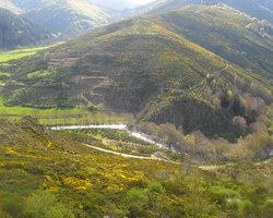 Aire naturelle de l'Aigoual - Bassurels - Aire naturelle