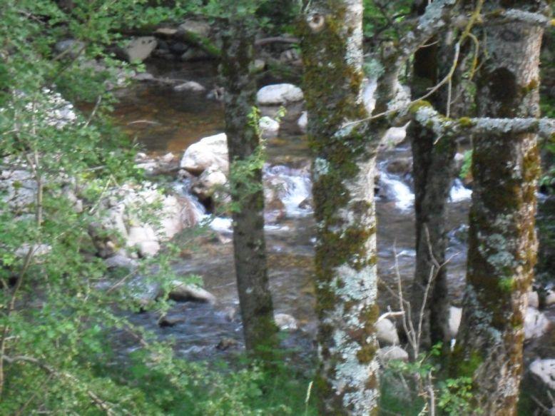 La rivière